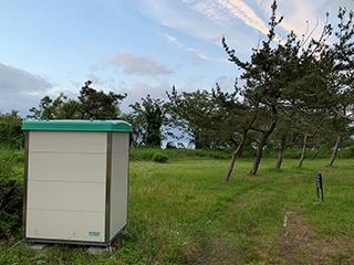 滋賀県琵琶湖なぎさ公園ムーブレットツインLT-2